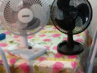 Vendo  dois ótimos ventiladores voltagem 110