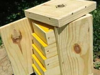 Caixa de abelha sem ferrão