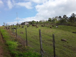 Sitio de 2,2 ha em Cruzeiro do Sul com casa de 3 dorm