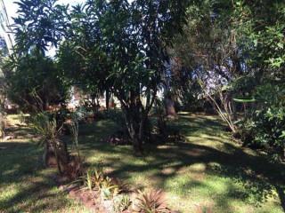 Sitio em Igrejinha - Solitária com casa de 2 dorm