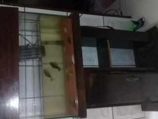 Vende-se aquário em ótimo estado
