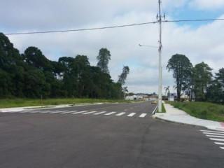 Cansado de pagar aluguel? Terrenos em São José Dos Pinhais.