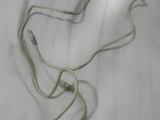 Cabo Cat5e Ethernet Patch Cable - 50 Feet   fragata pelotas