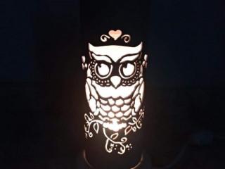 Luminária de Pvc Coruja