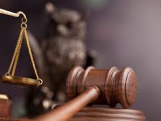 Curso básico de direito